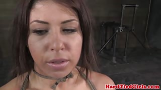 Tit punished submissive punished roughly