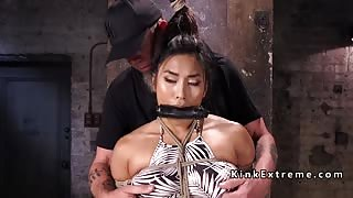 Hogtied and suspended slave toyed